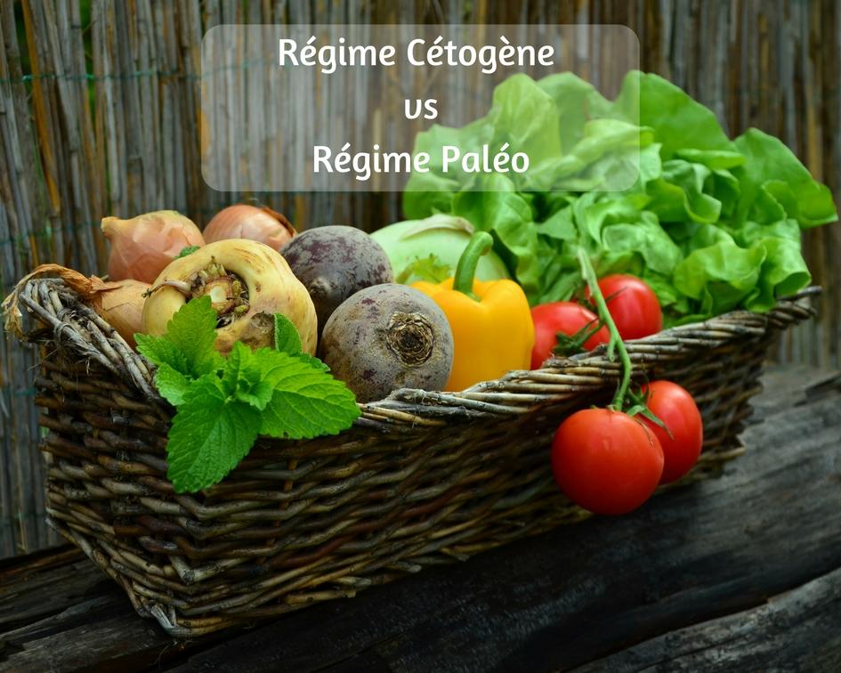 Regime paleo ou cetogene