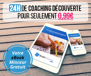 Ebook regime thonon